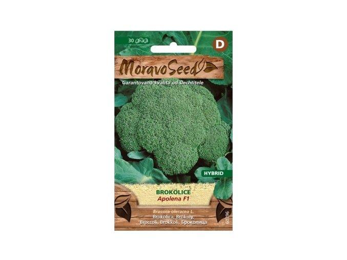 41375 brokolice apolena f1 moravoseed