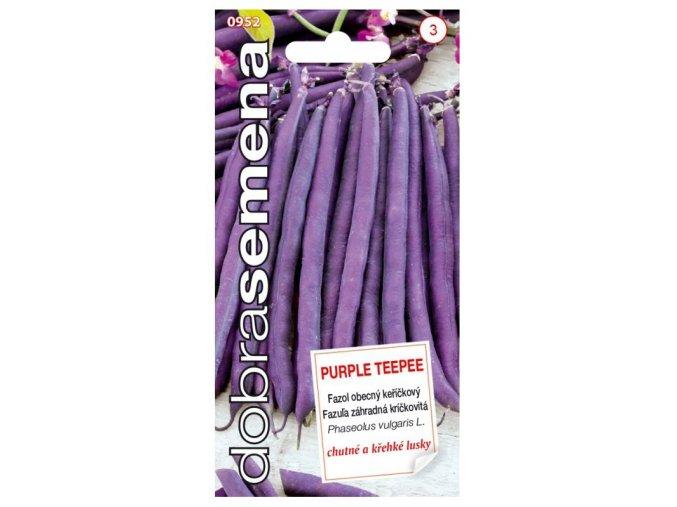 43286 fazol kerickovy purple teepee 10g dobra semena