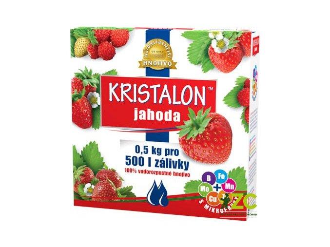 46421 kristalon na jahody 500g
