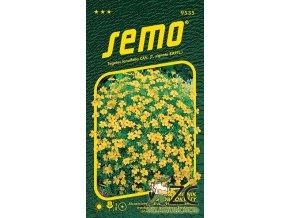 40415 1 aksamitnik drobnokvety zluty 0 2g