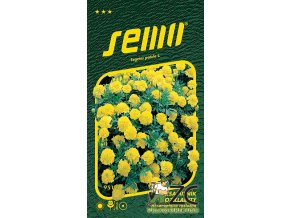 40466 1 aksamitnik rozkladity lemon drop 1g