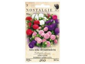 40694 astra nizka chryzantemokveta mix nostalgie