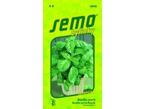 40823 bazalka prava lettuce leaf salatova 1g