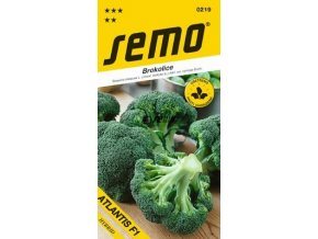 41363 brokolice atlantis f1 40s