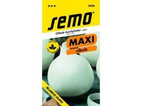 41729 cibule jarni southport white globe 1g serie maxi