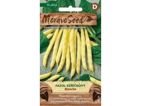 43262 fazol kerickovy blanche moravoseed