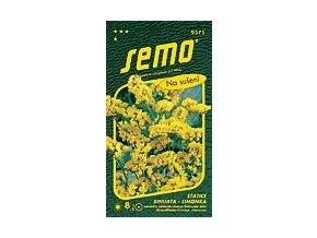 47975 limonka statice sinuata gold coast zluta 0 5g