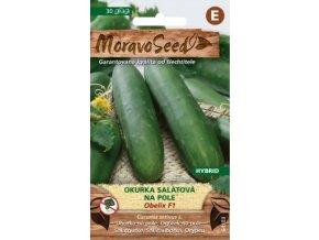 51251 okurka salatova obelix f1 moravoseed
