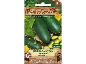 51257 okurka salatova ramzes f1 moravoseed