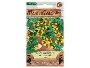 53006 rajce kerickove balkonove aztek moravoseed