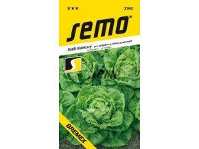 54344 salat hlavkovy bremex 0 6g