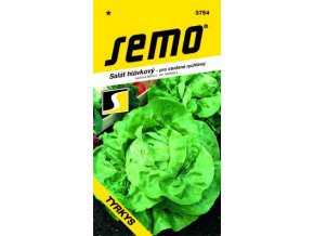 54398 salat hlavkovy tyrkys 0 4g