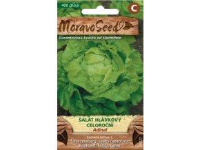 54401 salat hlavkovy adinal moravoseed