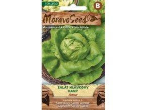 54404 salat hlavkovy amur moravoseed