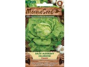 54410 salat hlavkovy cassini moravoseed