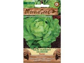 54428 salat hlavkovy panter moravoseed
