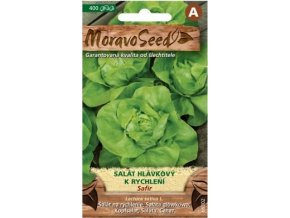 54434 salat hlavkovy safir moravoseed