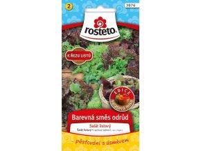 54464 salat kaderavy k rezu barevna smes odrud 0 8g rosteto