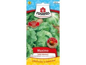 54488 salat ledovy maximo 0 5g rosteto