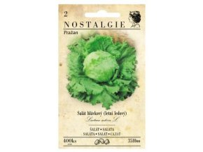 54491 salat ledovy prazan nostalgie