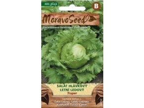 54494 salat ledovy traper moravoseed