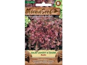 54503 salat listovy redin moravoseed
