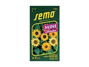 55055 slunecnice rocni pacino mix 15s serie mini