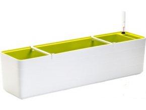 2343 1 truhlik samozavlazovaci berberis bila zelena 80 cm
