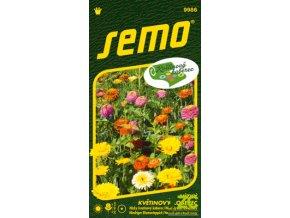 62306 1 smes lucni trpyt little carpet multicolour 6g serie kvetinovy koberec