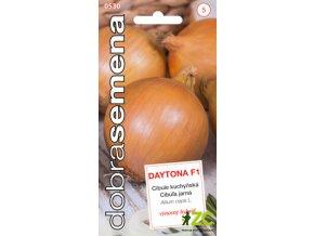 62315 1 cibule kuchynska daytona 200s dobra semena