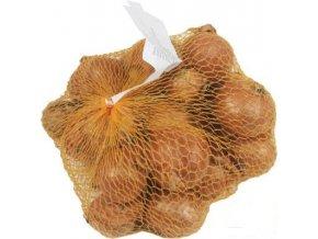 Sazečka - šalotka žlutá (35-50 mm) (hmotnost 500 g)