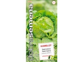 63368 1 salat celorocni ledovy kamelot 0 6g dobra semena