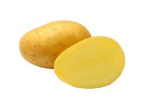 64964 1 sadba brambor antonia 5 kg pr