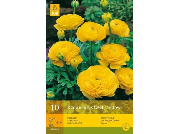 PRYSKYŘNÍK - Ranunculus Geel / Yellow