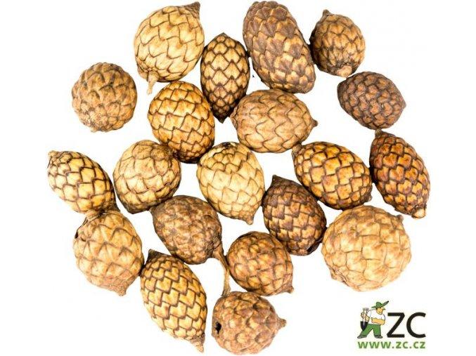 Dekorace - přízdoba - Cane fruit