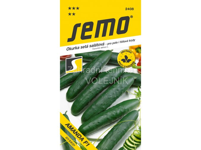 OKURKA AMANDA F1 - polní salátová 1.3 g