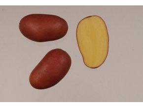 Sadbové brambory - Bella 5kg