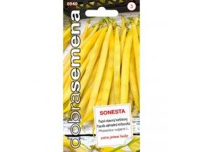 FAZOLE SONESTA - keříčkový 10 g