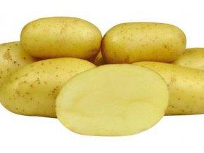 Sadbové brambory - Colette
