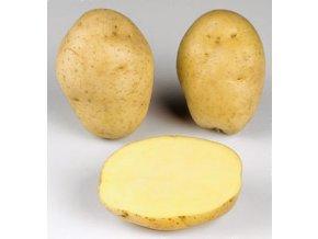Sadbové brambory - Marabel