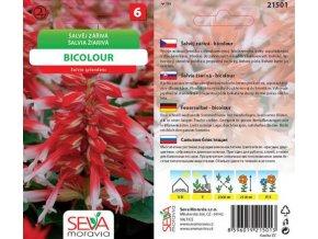 Šalvěj zářivá - BICOLOUR 0.1 g