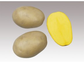 sadbove brambory alice 5kg