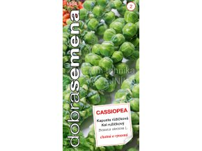 KAPUSTA CASSIOPEA - RŮŽIČKOVÁ 0.7 g