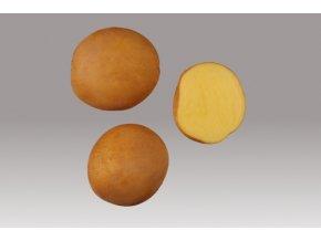 Sadbové brambory - Jitka