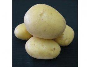 sadbove brambory carrera 25 kg