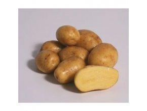 sadbove brambory ditta 25 kg