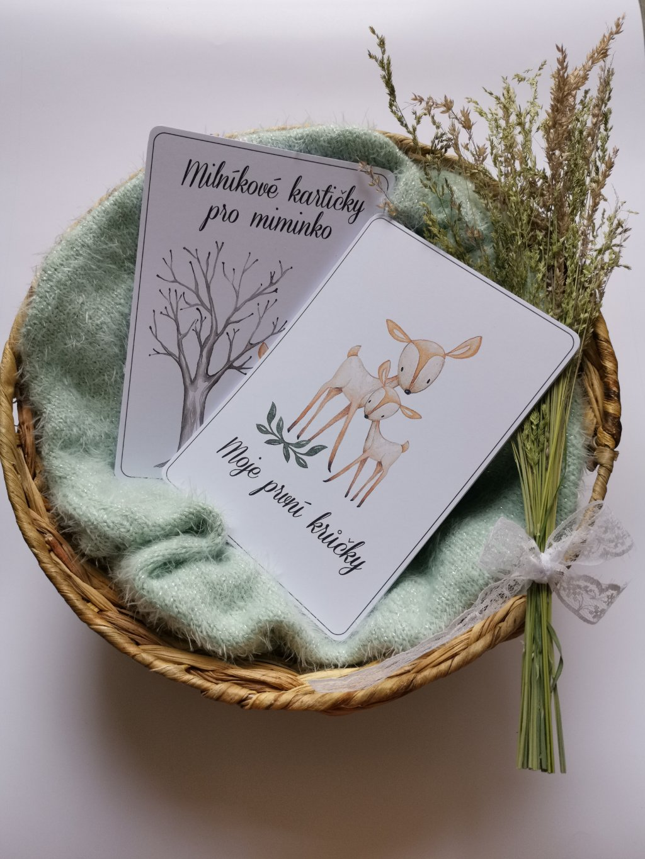 Milníkové kartičky LES