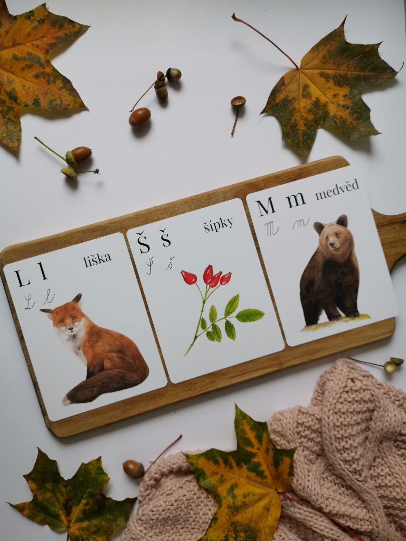 Vzdělávací kartičky MALOVANÁ ABECEDA
