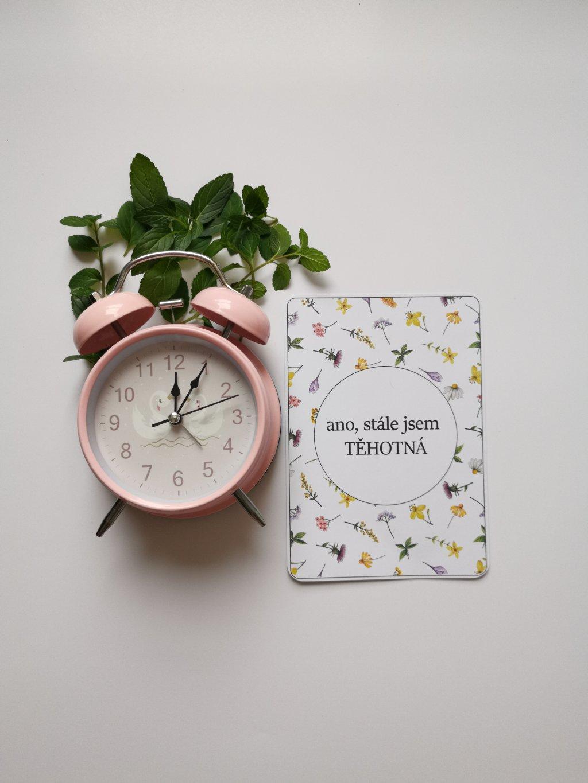 Těhotenské milníkové kartičky ROZKVETLÁ LOUKA