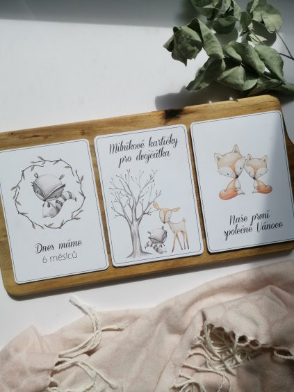 Milníkové kartičky LES pro dvojčátka